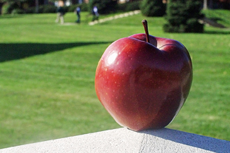 Photo of Apple on School Campus