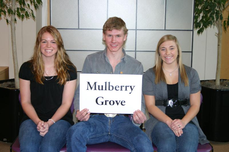 Photo of Mulberry Grove 2011
