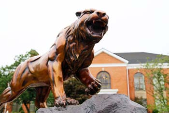 Photo of the Bearcat Statue