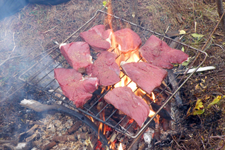 Photo of Moose Steaks