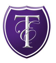 Teaching for Excellence Logo