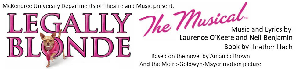 Legally Blonde the Musical Web Banenr