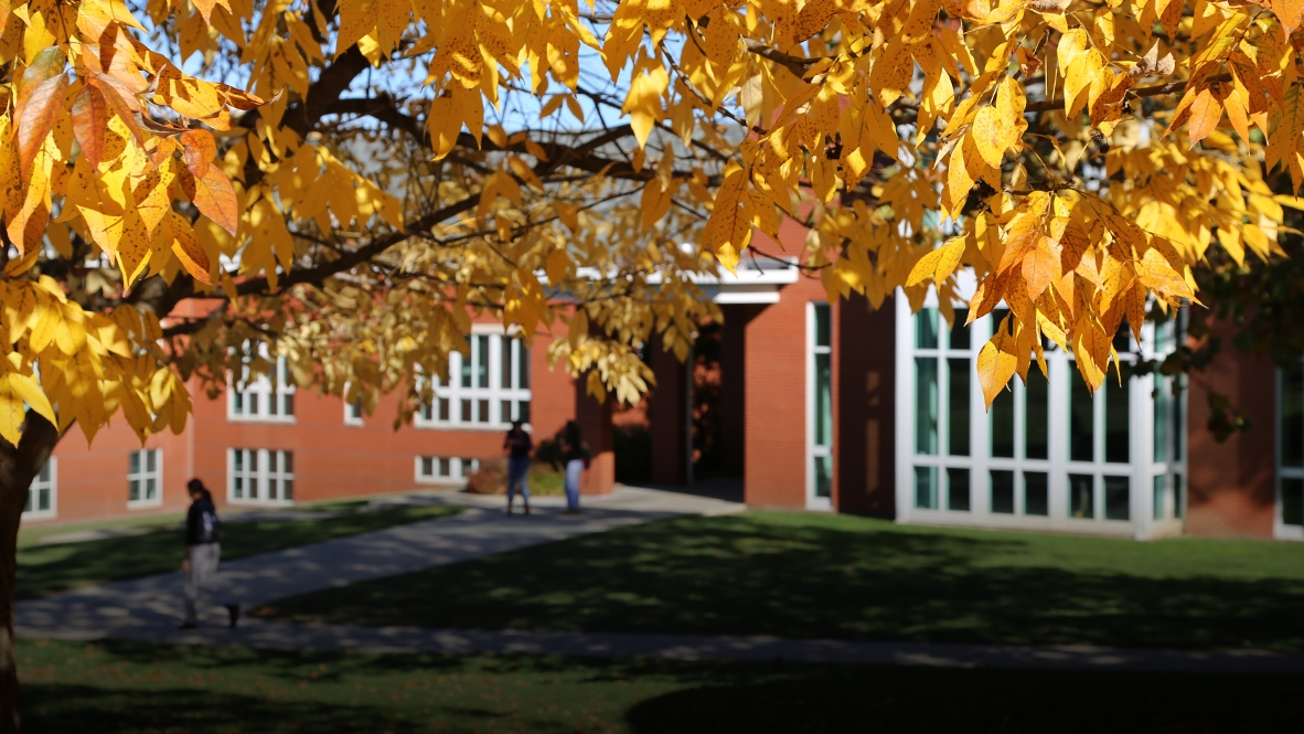 Lebanon Campus in the Fall