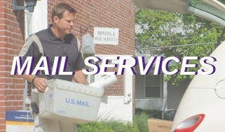 Information on Mail Services