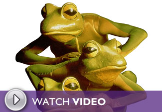 Play the Imago Theatre: FROGZ Video