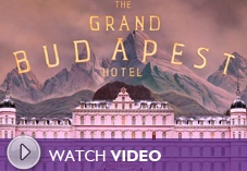 The Grand Budapest (2014): Film Art Series